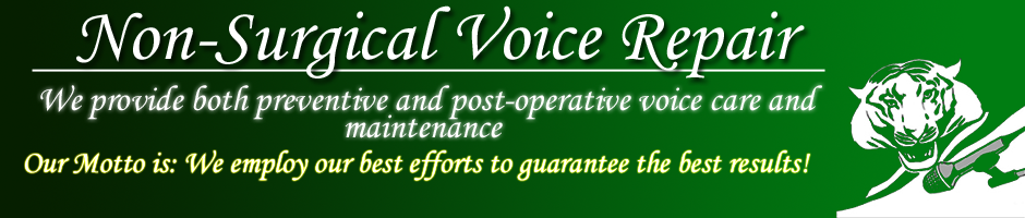 We provide both preventive and non-operative voice care and maintenance.